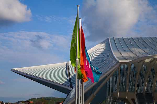 Flags at Liège-Guillemins
